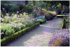 Gravel path & lavender