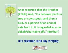 Take care of the Earth and it will sustain us all!