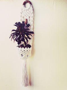 Macrame hanging wall planter