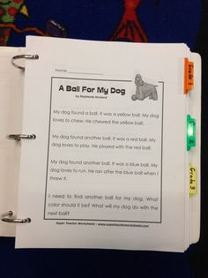 Comprehension Binders and Organization for RtI