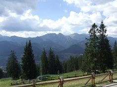 """Zakopane; Poland    What a fantastic time we had here!  ...and """"Mountain Tea"""". Great stuff, don't pass on it if anyone offers you this!!!!"""