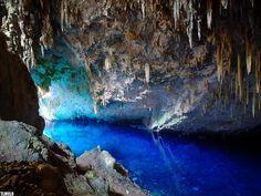 Rivers of Bonito - Brazil