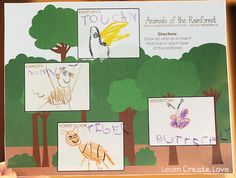 "Love this blog, lots of great preschool crafts & even weekly ""theme"" projects/crafts/lessons { Learning About Rainforest Animals }"