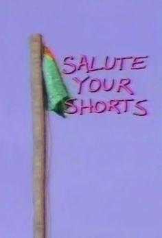 90s: Salute Your Shorts TV Show