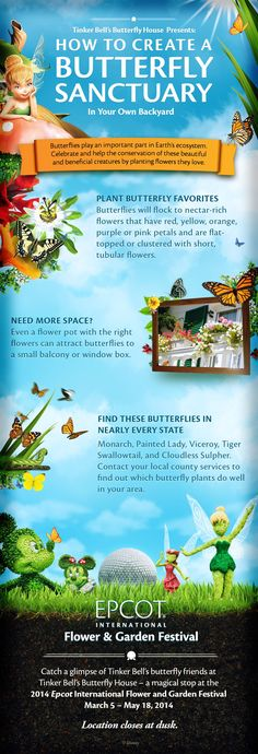 Tinker Bell's Butterfly House presents: How to Create a Butterfly Sanctuary #DIY #Tutorial #Epcot #Flower #Garden #vacation #waltdisneyworld