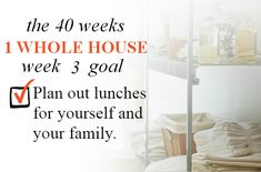 40 Weeks - 1 Whole House: Week 3 Goal - Plan out lunches for yourself and your family | Organize 365