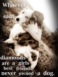 who ever said diamonds were a girls bestfriend, never owned a dog