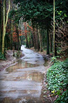 A path to Malahide castle in Ireland