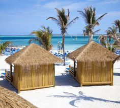 White sandy beaches, clear blue waters and palm trees. CocoCay, Bahamas.