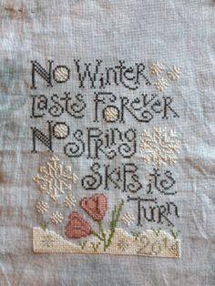 Winding Vine Wanderings