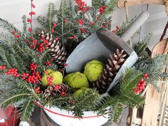 Christmas arrangement in enamel basin with hedge apples and old scoop