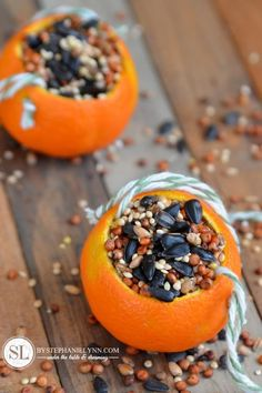 Don't forget about our feathered friends this #fall - Make some homemade citrus bird feeders using this simple gelatin based recipe #FallDIY ~ @bystephanielynn