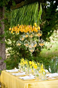 Suspended yellow tulips