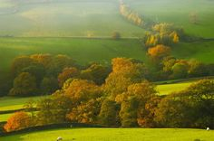 Farndale farm with autumn colours at sunset, North Yorkshire Moors National Park, England.   By Paul Williams