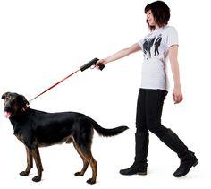 Retractable dog snap leash