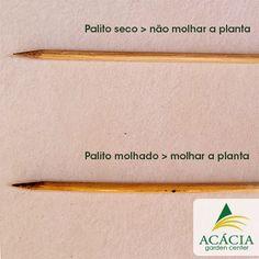Conheça o teste da varinha e saiba a hora certa de regar suas plantas!  http://bit.ly/TestedaVarinha