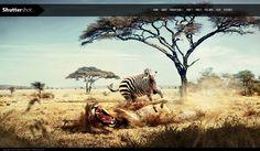 Fullscreen Photography WordPress Free Template -  #freebie #wordpress #theme #template #webdesign - http://designolymp.com/
