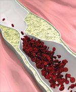 Human Studies On Vitamin K