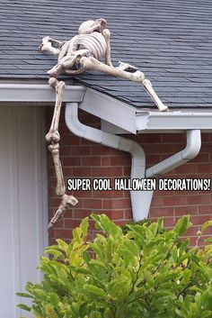 Halloween Decor: Skeletons climbing up on the roof of the shooting range...