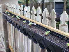 Strawberry beds made with rain gutters, great idea for along the fence
