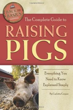 The Complete Guide to Raising Pigs: Everything « Holiday Adds