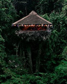Neiman Marcus treehouse. This is a flickr set of amazing treehouses, definitely worth a look!