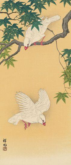 Ohara Koson (1877-1945) | Two White Javanese Sparrows in Maple Tree,   -- Woodblock Print