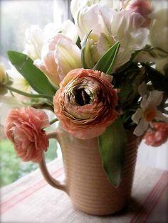 barbara wyeth - ranonkel & tulpen.