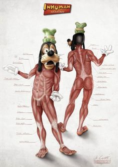 Disney Inhuman Anatomy