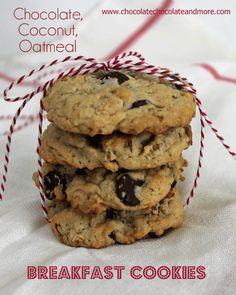 Chocolate Coconut Oatmeal Breakfast Cookies from www.chocolatechocolateandmore.com