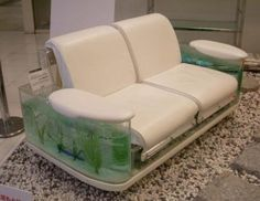 fish tank couch