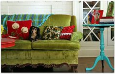 Like the dog and the sofa