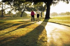 Easing Brain Fatigue With a Walk in the Park