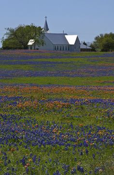 texas country churches - Google Search