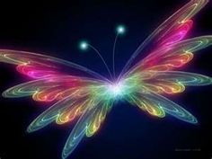 not a real butterfly but very cool.