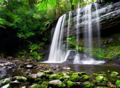 Take in the beauty of Tasmania at Russell Falls - in one of the Land Down Under's most magnificent wild spaces, Mt. Field National Park.
