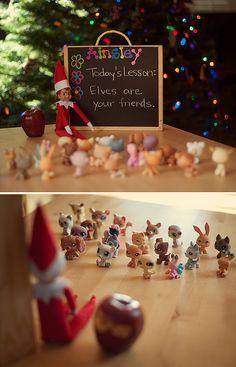 elf teacher; today's lesson - elves are your friends