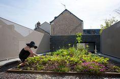 House Concept Ideas with Green Garden: Beautiful Outdoor Garden Of Maison Fertile For Contemporary Home Exterior Decor And Refreshing Nuance...