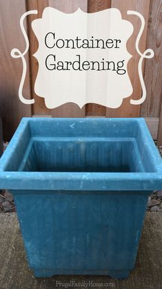 How to grow your own food in a container garden.