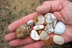 Agates from Agate Beach. Near Patricks Point. Ca. Not ours but we've collected these for years. This is an example of nice large agates