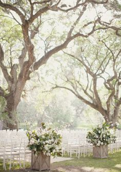 I would love to have large trees surrounding my wedding ceremony