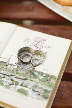 ring shot in book