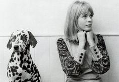 friend forev, fashion, friends, dogs, dalmatians
