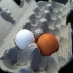 Two Eggs in a Carton. White and Brown. by stevegarfield, via Flickr