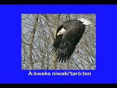 ▶ Clans of the Six Nations,mohawk language. - YouTube