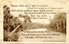Florida postcard from 1917