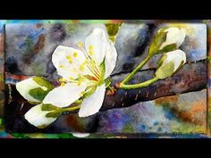 How to Paint the Cherry Blossom in Watercolor, Part 2 - YouTube