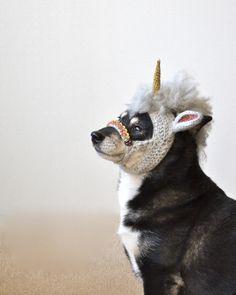 Unicorn | Flickr - Photo Sharing!