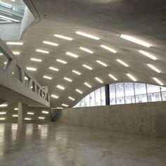 oma, architectur studi, milstein hall, architectur general, architectur build
