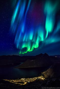 Aurora Borealis above Village on Senja, Norway